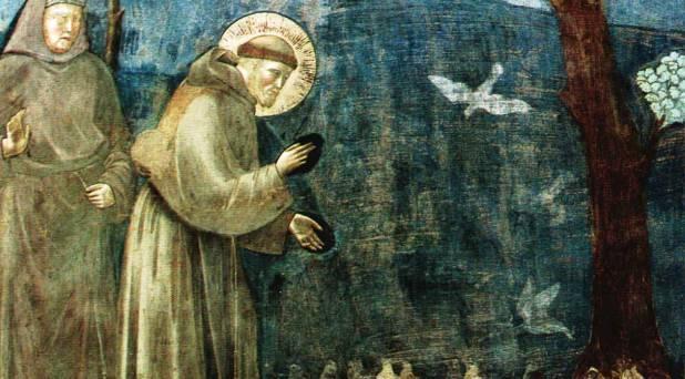 Francisco de Asís: un santo para todos