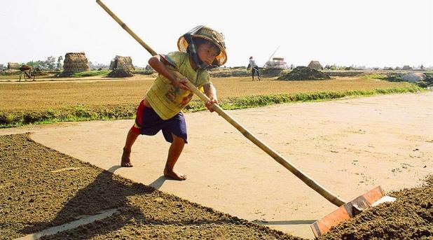¡No al trabajo infantil!