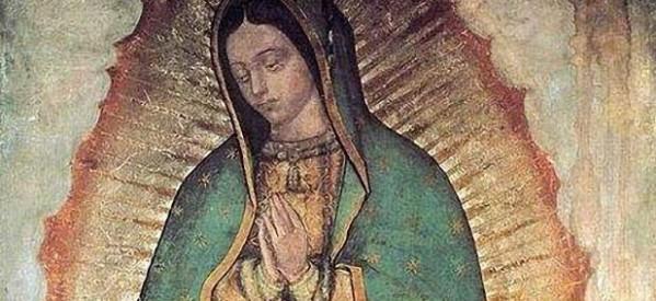 Los verdaderos milagros de la Imagen Guadalupana