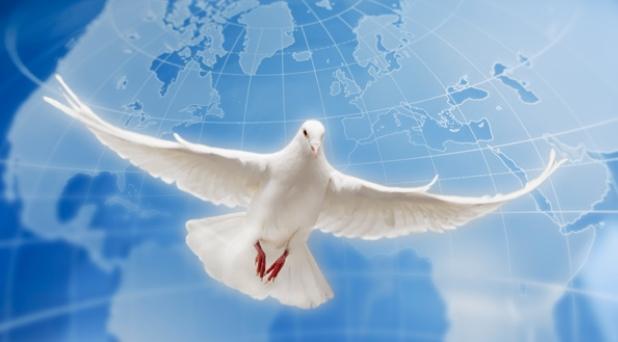 2014 ¿año de la paz?