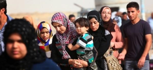 Urge ayuda a miles de desplazados y refugiados en el mundo
