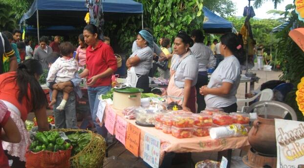 Dona Taiwan recursos a Caritas mexicana para proyectos de economía solidaria