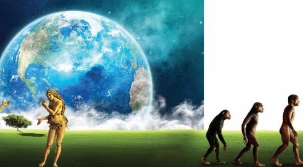 Evolución o Creación: ¿A cuál irle?
