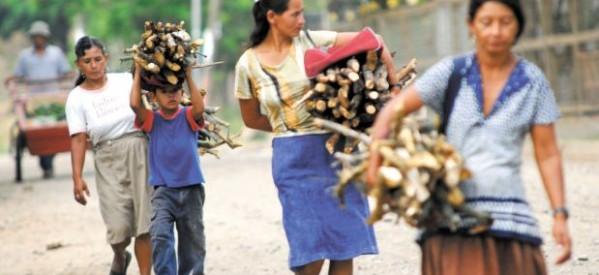 Violencia, desigualdad y pobreza: retos para el desarrollo de la mujer