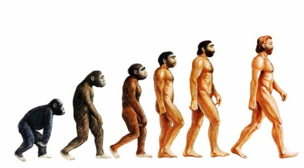 La evolución, ¿decide algo?