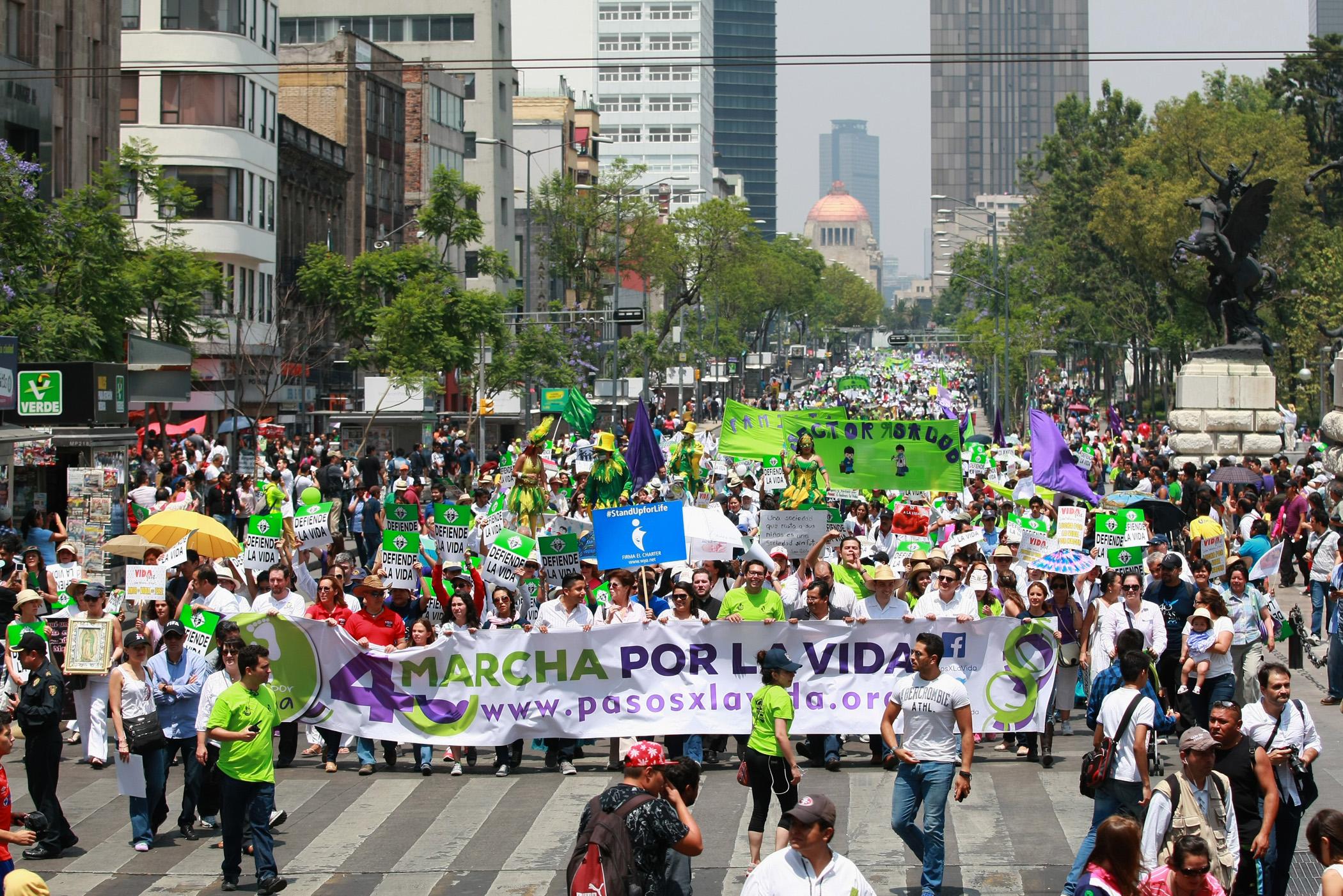 Masiva marcha de amor por la vida: más de 10 mil marchan por el fin del aborto