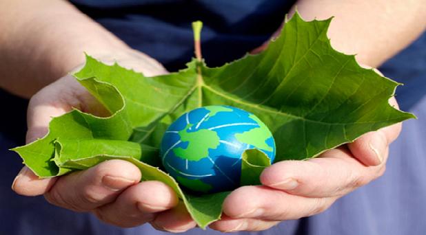 De la crisis ecológica a la conversión ecológica