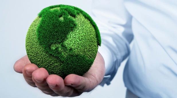 Conversión ecológica