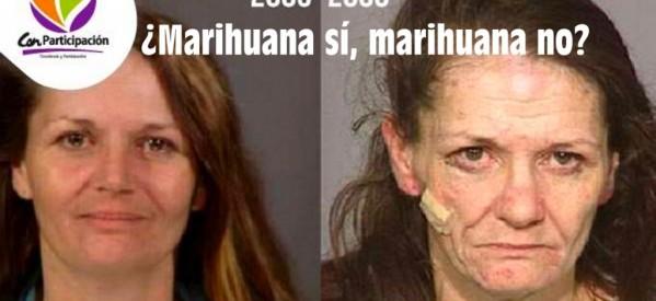 ¿Marihuana sí, marihuana no?