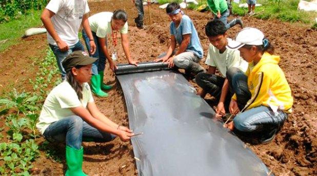 Agricultura para ayudar a jóvenes