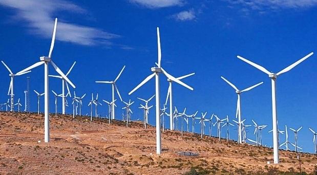 Eólicos: entre la extinción y el despojo