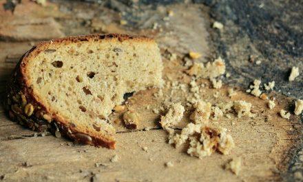 ¿Qué hago contra el hambre y el desperdicio?