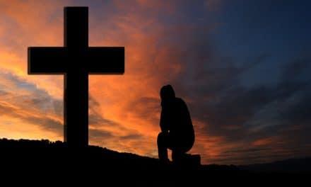 Volver a Cristo