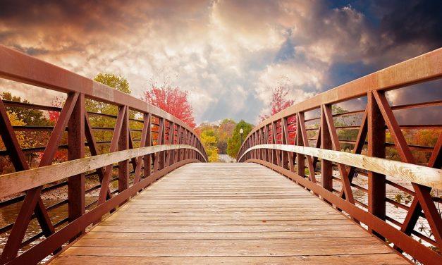Construyamos puentes