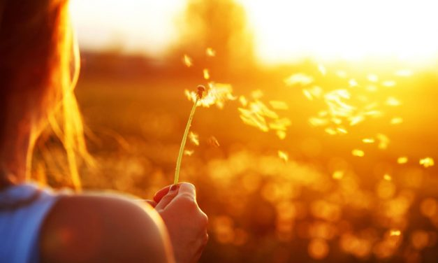 Minimalismo en la vida y en los pensamientos