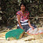 Son 69 los idiomas que se hablan en México