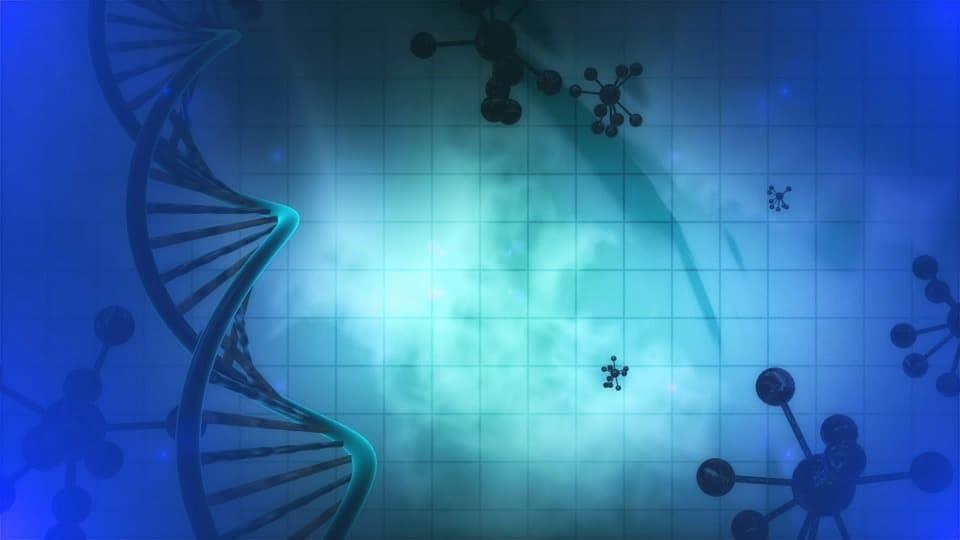 En el juicio sobre los embriones congelados