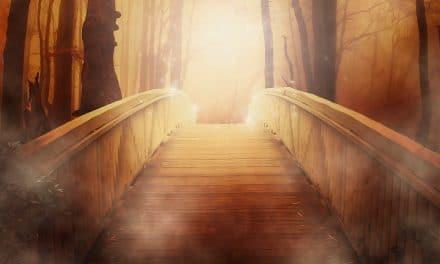 La vía de la luz