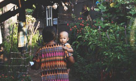 Lecciones sobre maternidad