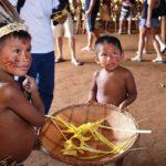Iglesia, no secta: el Sínodo de la Amazonía