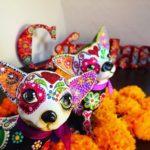 """""""Colores de México"""", una noche de comida, música y tradición"""