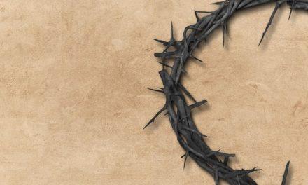 Cristo también es Rey de las cosas temporales