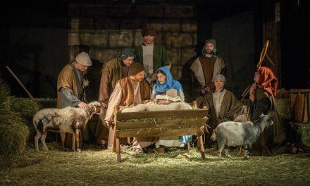 Navidad es un nacimiento