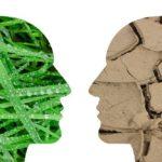 El cambio climático y la filosofía