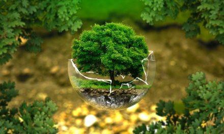 Progreso y ecologismo