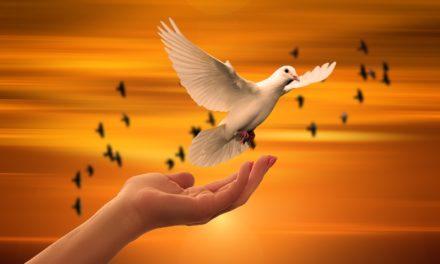 Los fundamentos católicos de la paz