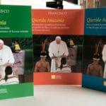Doce claves de la exhortación apostólica del Papa: «Querida Amazonia»