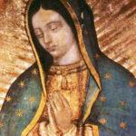 Coronavirus: CELAM propone consagración del continente a la Virgen de Guadalupe