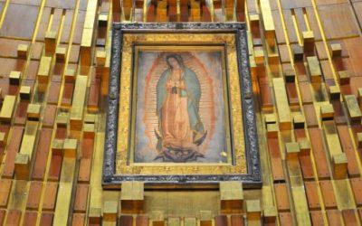 ¿Y si volteamos los ojos hacia la Virgen de Guadalupe?