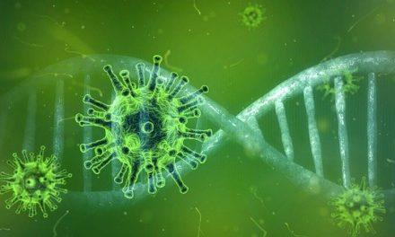 Los riesgos del coronavirus