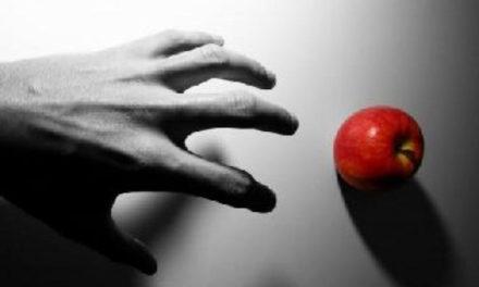 """Los cuatro """"no"""" sociales ante la pandemia: No al egoísmo"""