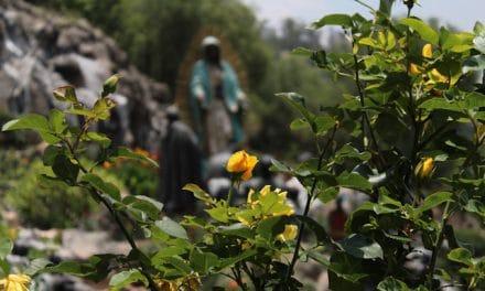La Virgen de Guadalupe está en todos los momentos de nuestra historia El Observador / Redacción
