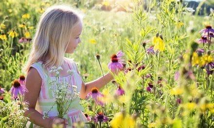 La infancia espiritual de santa Teresita de Lisieux