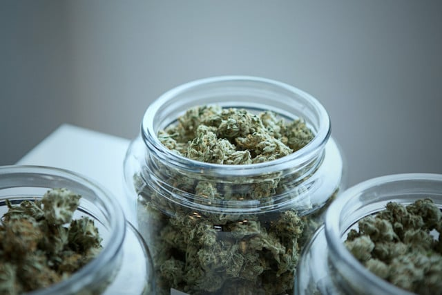 Legalización de la marihuana por encima del bien común
