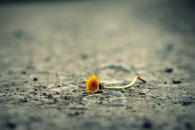 El pecado como camino hacia la nada