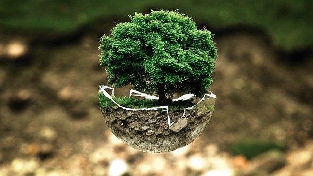 Acciones humanas y cambios ambientales