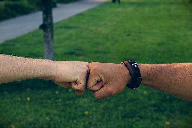 """Las alianzas y """"La alianza"""""""