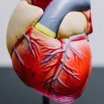 La covid-19 no es una enfermedad vascular