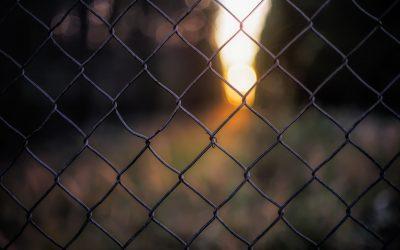 En la jaula de las ideas