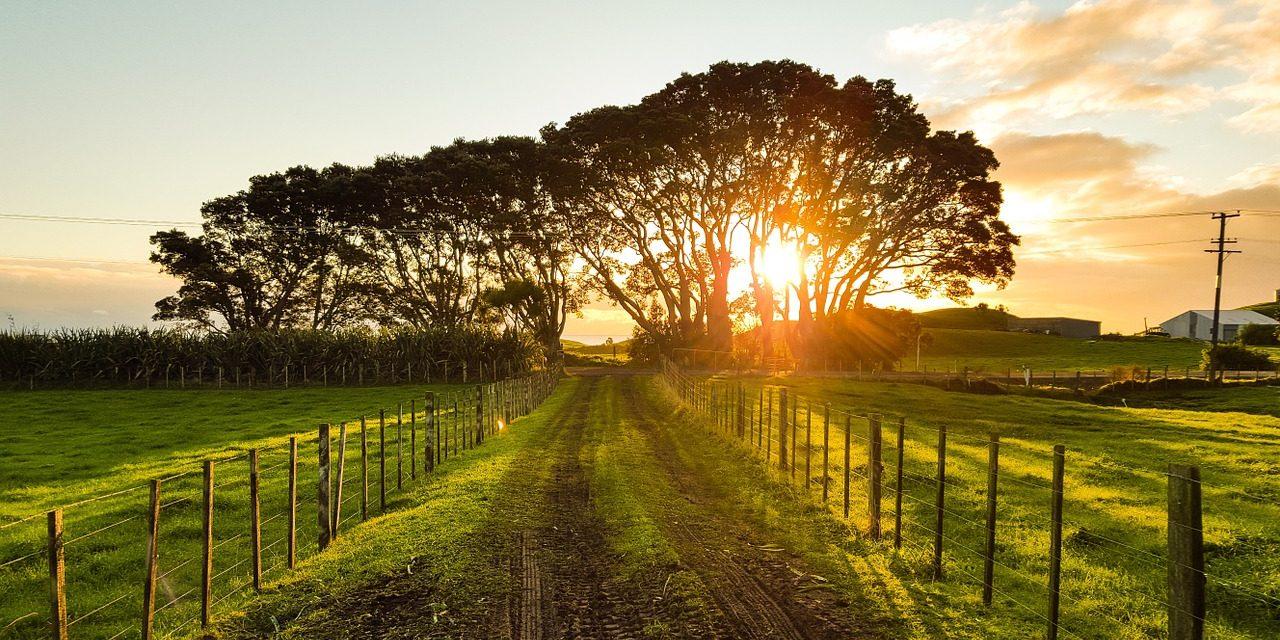Hoja de ruta hacia Dios