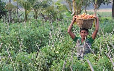¿Qué puede hacer yo contra el hambre en el mundo? (2a parte)